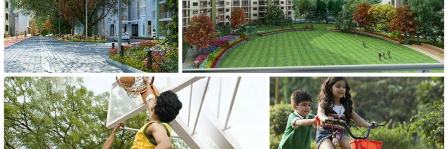 lnt-raintree-boulevard-featured-image